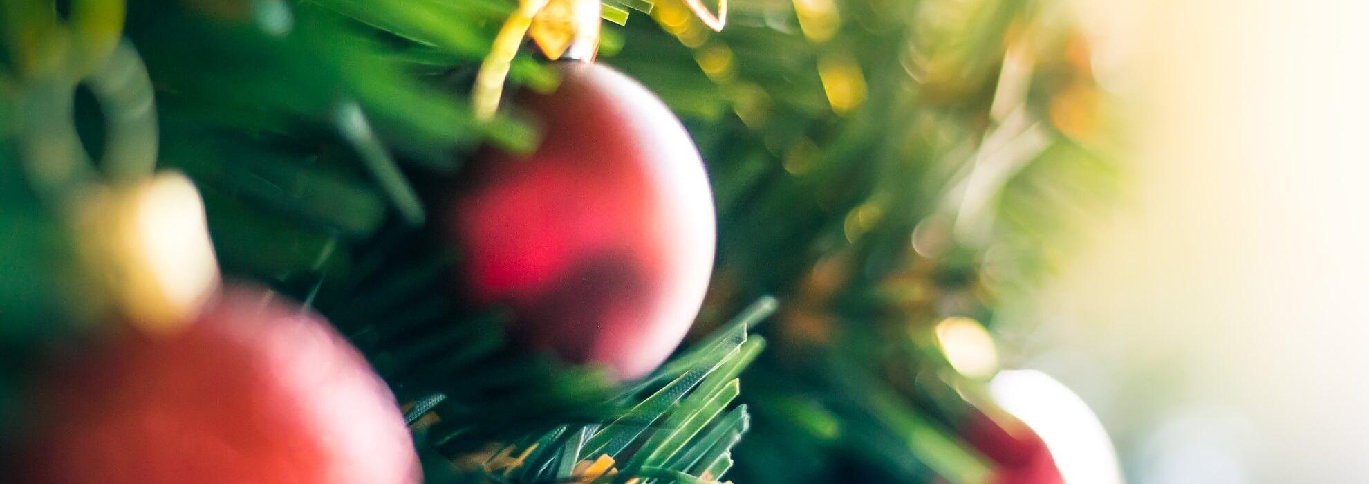 16-11-21 Help December komt eraan AnkeTragter